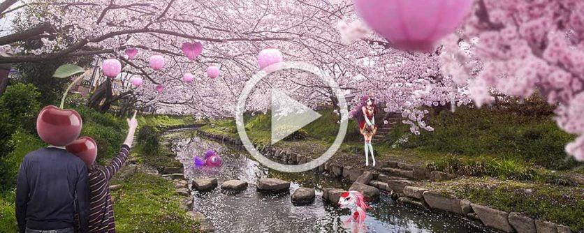 cherry casino sakura free spins bonusar